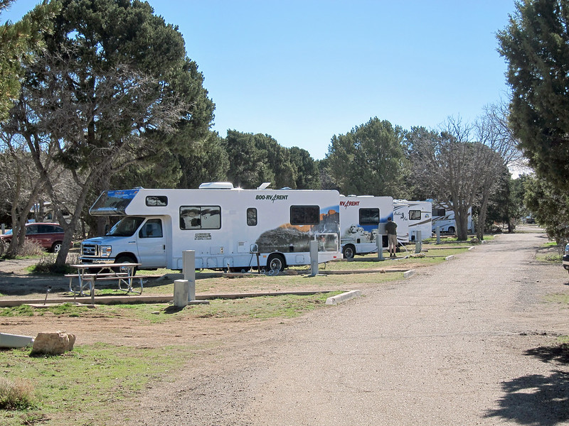 RVs in a campground